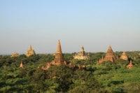Bagan. Birma. Duże stupy górują nad okolicznymi drzewami, mniejsze giną wśród zieleni