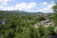 Park Narodowy Lovcen Czarnogóra