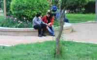 Bagh-e Eram. Irański park gdzie chusty same zsuwają się z włosów