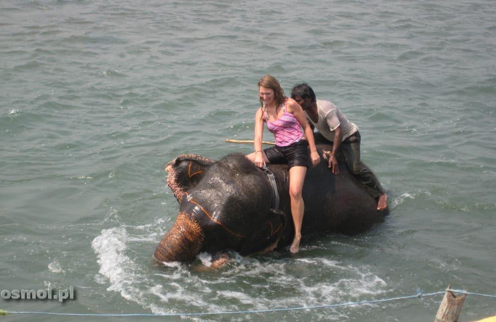 Kąpiel ze słoniem