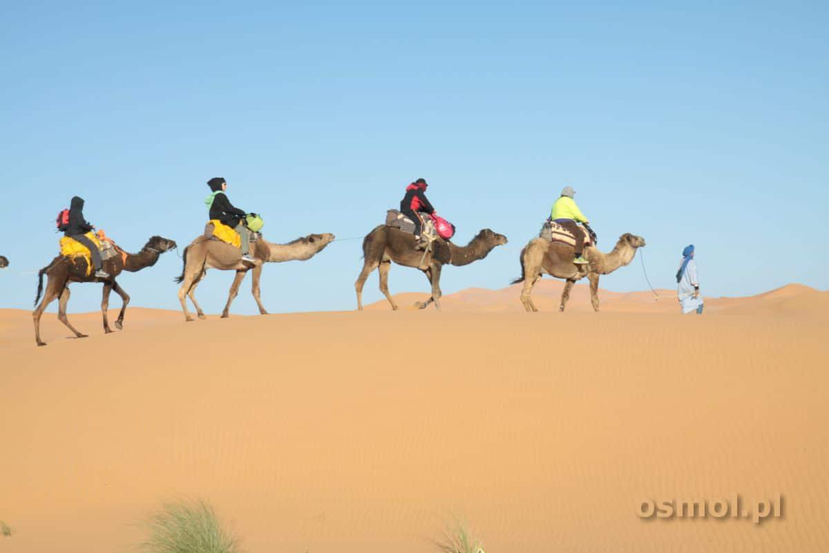 Wycieczka na pustynię w Maroku